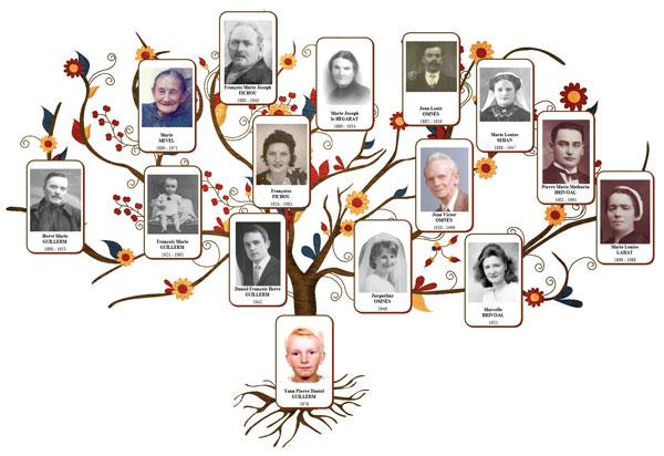 Le g n atique nouveau est arriv blog presse du cdip - Arbre genealogique avec photo ...