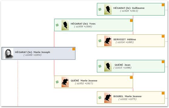 arbre en ligne geneatique.net